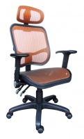 all mesh chair with two function mechanism.  Adjustable arm with PU pad.